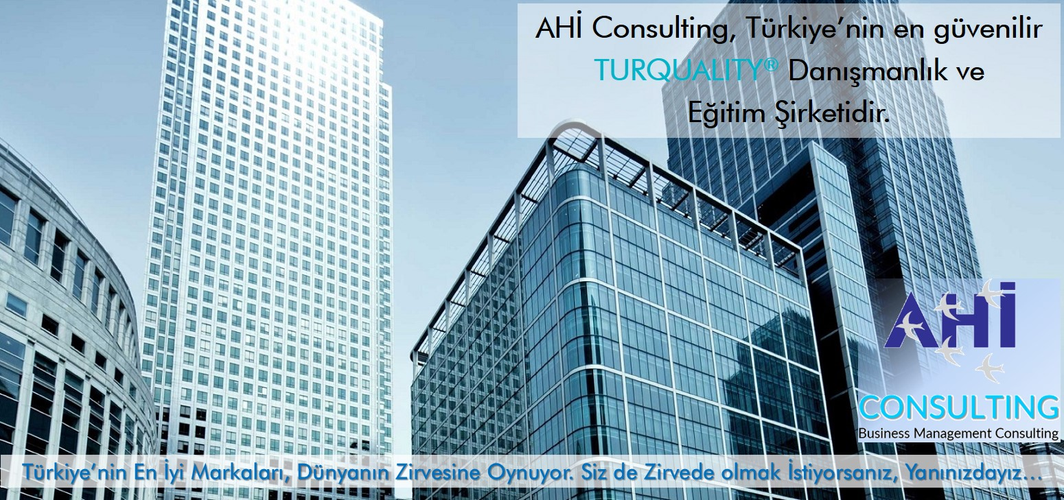 AHI CONSULTING